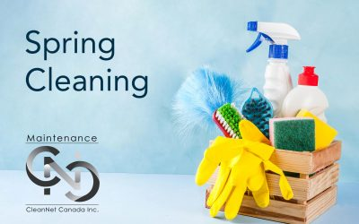 4 Areas to Focus On in Your Spring Cleaning